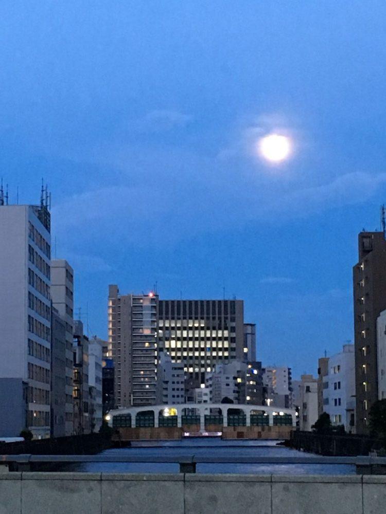豊海橋(工事中)