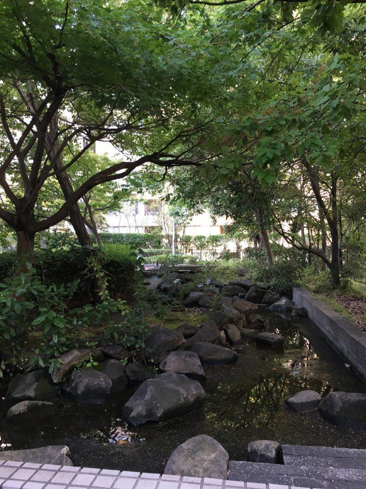 桜川屋上公園の池