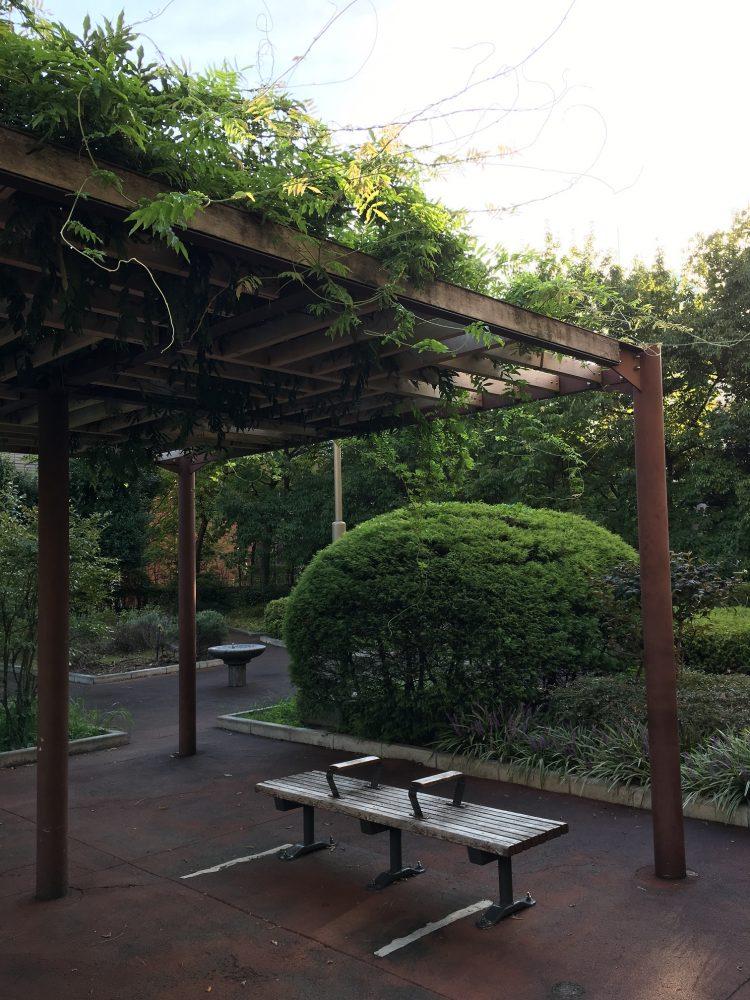 桜川屋上公園の藤棚