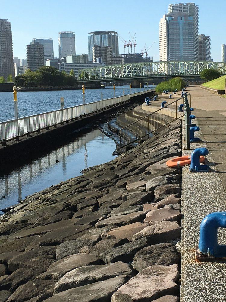 石川島公園人工浅瀬