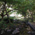 下水道局のポンプ所の屋上にまさかの癒しスポット、桜川屋上公園